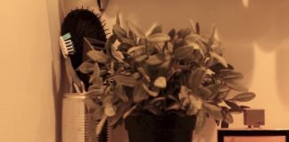Room Tour  Rachel Aust