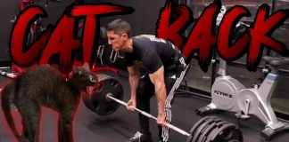 Athlean-x/Jeff Cavaliere Contradicts Himself